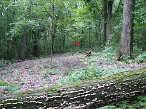 The only photo I could get was off a disc golf site, so please ignore the red arrow.